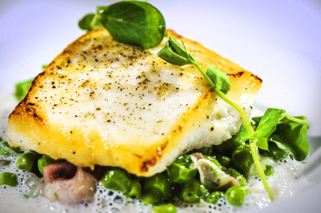 hunter-486-fillet-of-cod
