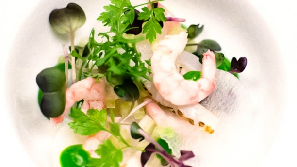 somm-restaurant-wine-bar-chef-s-suggestion-44962